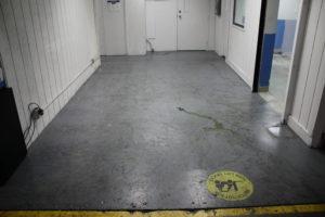 A Hallway with Failing Floor Paint